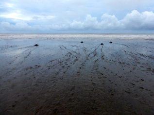 Playa Corozalito